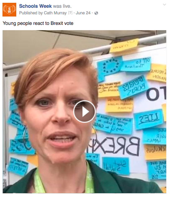 SW Brexit video