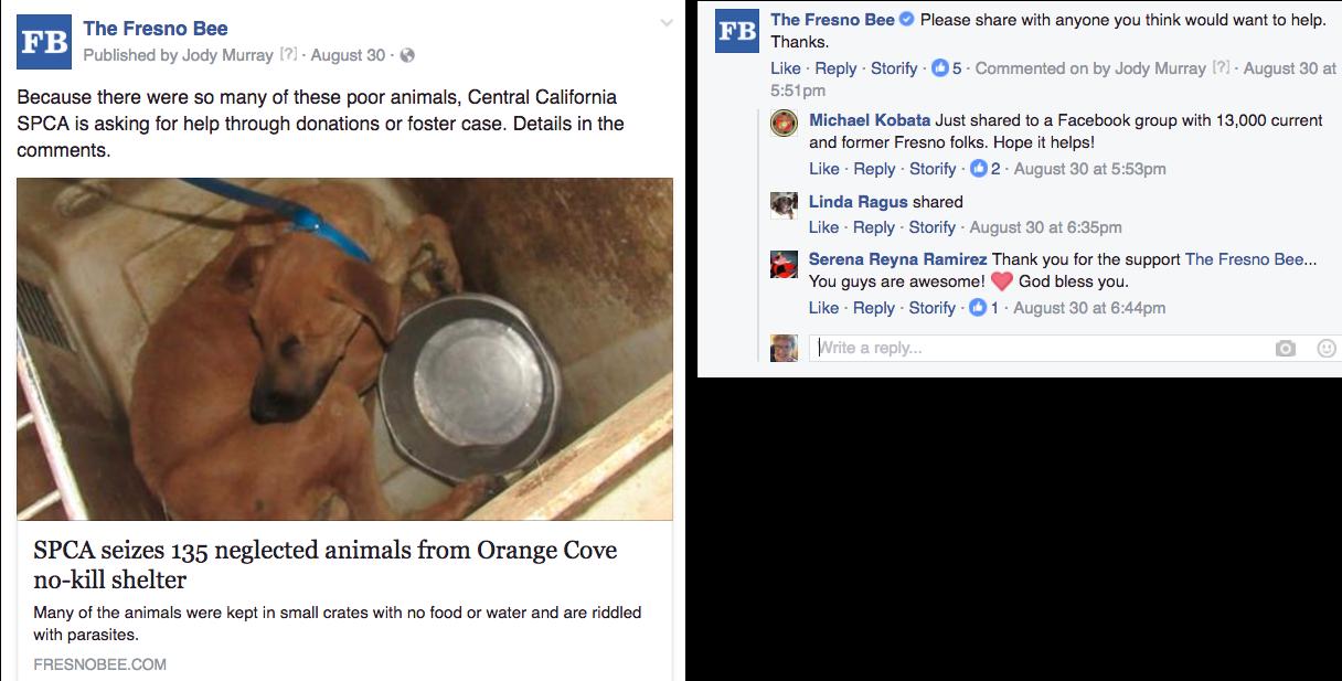 Fresno foster animals